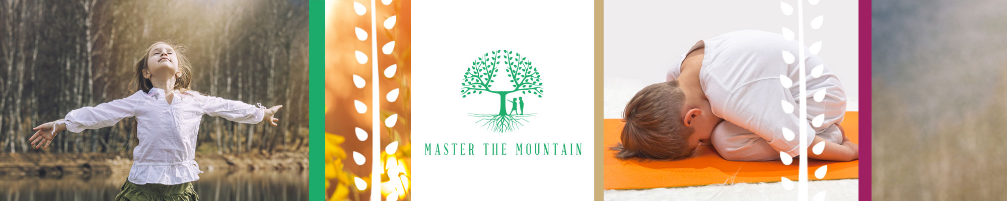 Contact Master the Mountain logo banner